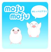 かわいい文鳥・雑学アプリのアイコン