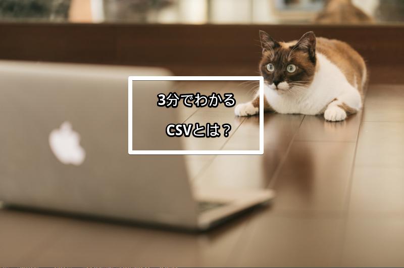 3分でわかる CSVとは?