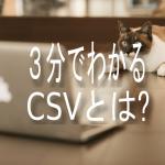 CSVとは何か?3分で説明します。