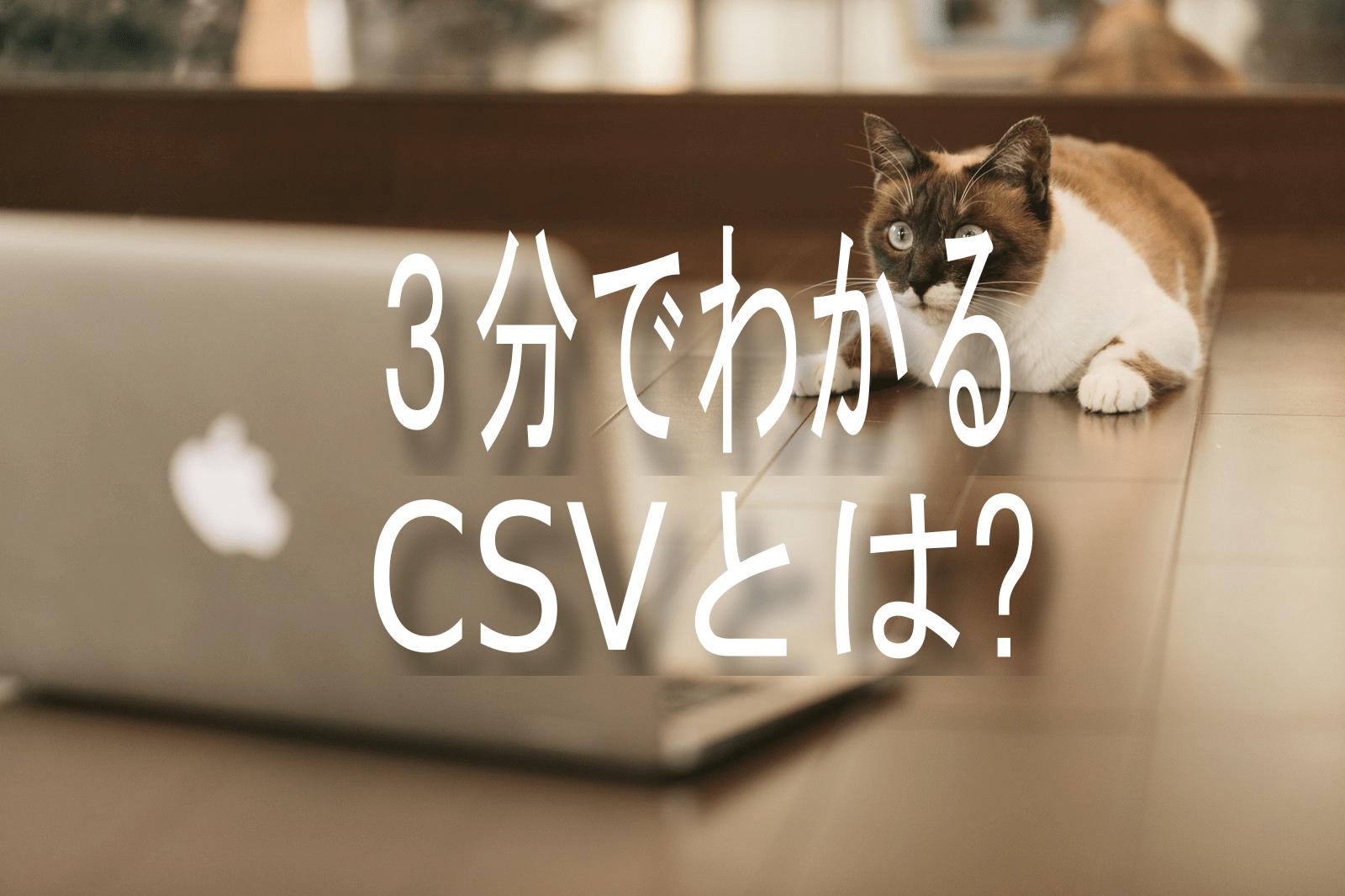3分でわかる。CSVとは?
